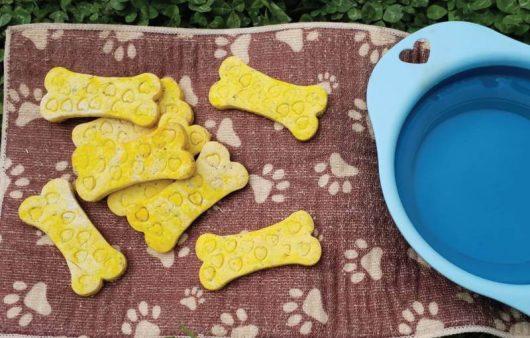 Biscotti-Parmigiano-reggiano